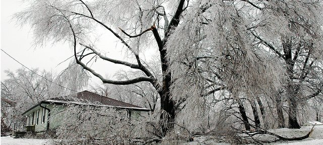 Numerous tree branches litter the yard and street in front of a house on the corner of First and E. Lois streets after an ice storm rolled through Leavenworth County on Tuesday. About 6,000 residents were left without power from the fallen limbs and downed powerlines.