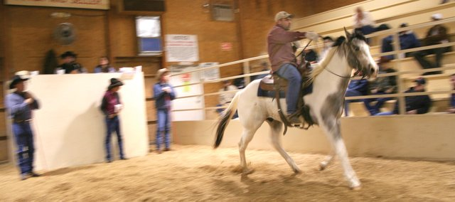 A horse is paraded around the arena at Campbell's Sale Barn near Linwood, Kan., site of a weekly horse auction for the past 22 years. For a variety of reasons, the bottom has fallen out of the horse market.