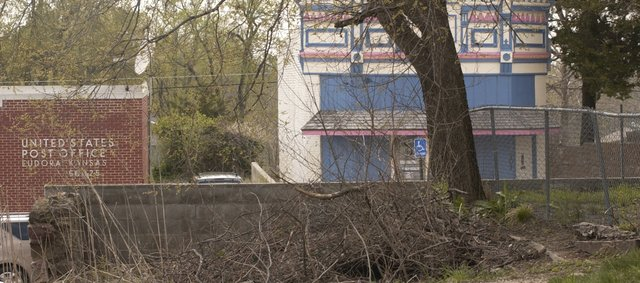 A view from the back side of the troublesome Main Street wall reveals the growing tree that is threatening to topple the structure. The Eudora City Council agreed Monday to start condemnation proceeding to remove the structure.
