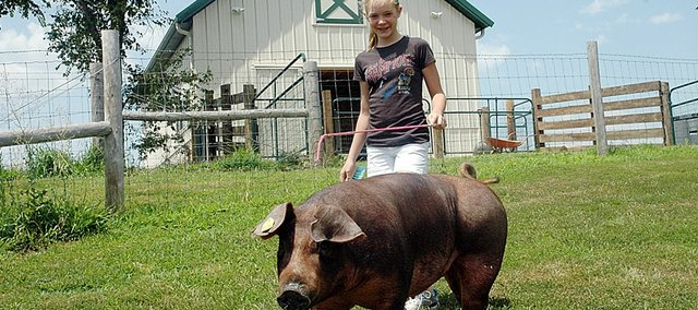 "Olivia Beins takes her pig ""Redhot"" for a stroll at the family's farm south of Baldwin City. Beins' entry last year in the Douglas County Fair won Grand Champion Market Hog."