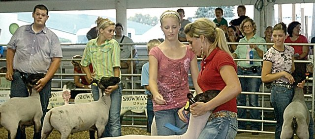 A group of Baldwin City area 4-H'ers show off their sheep last week at the Douglas County Fair. In the center is MacKenzie Flory, who won the division. Others, from left, are Conner Nottingham, Taylor Stanley and Paris Nottingham.