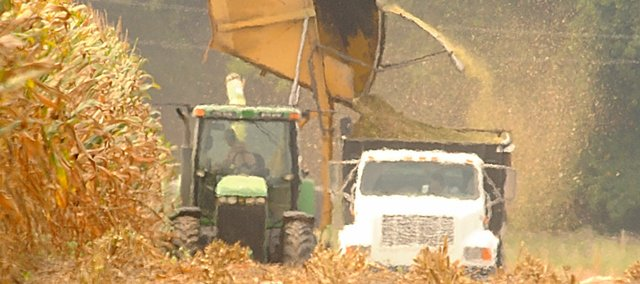 Kent Nunemaker cut some corn for silage last week east of Lawrence while conditions were pretty good and the corn isn't too wet.