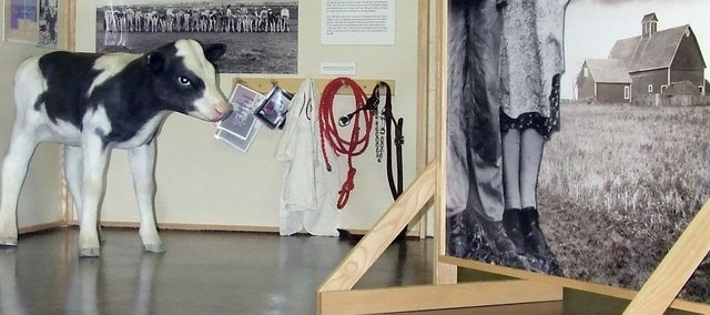 Farm Life: A Century of Change for Farm Families and Their Neighbors was a 2008 exhibit at the Agriculture Hall of Fame that examined the changes farming had seen in the last 100 years.