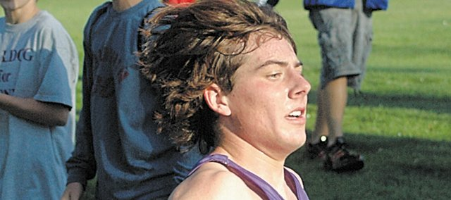 Baldwin High School sophomore Tony Weiss led the Bulldogs with a runner-up finish at Saturday's state meet.
