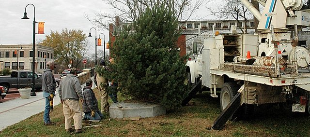 Baldwin City crews work to get the community Christmas tree in its stand Monday morning. The tree stands in the empty lot between the post office and Lumberyard Arts Center. The annual Light Parade and tree lighting ceremony will take place Nov. 29.