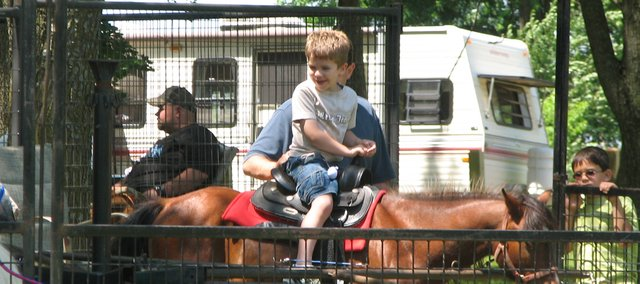 A young boy takes a pony ride at the petting zoo. The petting zoo had several animals for children to see and touch, including llamas and baby goats.