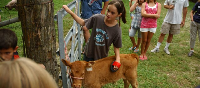 Brenna Zimmerman tells her fellow Pioneer 4-H'ers about the care and feeding of her bucket calf Scooter. Her report came during one of the stops at Monday's club tour in advance of next week's Johnson County Fair in Gardner