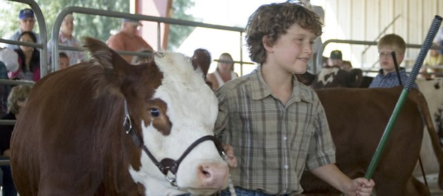James Breedlove, 9, Tonganoxie, competes in 4-H/FFA and open class beef cattle show and showmanship on Thursday afternoon at the Leavenworth County Fair.