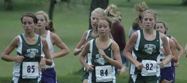 Carly Stanley, left, Ellie Sheridan, middle, Lacey Erickson, back and Beth Reichenberger, right, return to give the 2009 De Soto girls cross country team a solid core group. The Wildcats first meet is Sept. 3 at Anderson County.