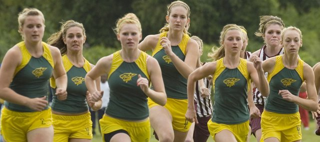 Basehor-Linwood's cross country team gained valuable experience in 2008, and the Bobcats will try to break through as a group this fall.