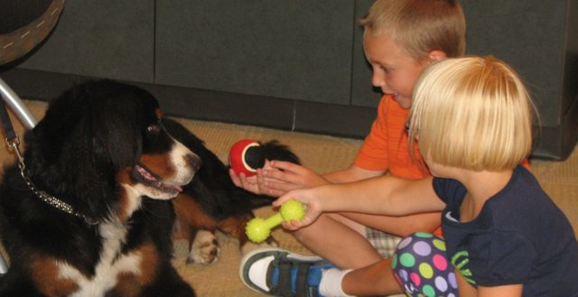 Luke Peters (back) and Tommi Alyse Peters play with Bella, a dog from Safe Harbor, Thursday at the Basehor Community Library.