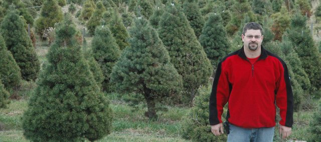 Brian Bierman, owner of Bierman's Christmas Tree Farm, has  been working with trees since he was 13 years old. Bierman said people came to his farm each season not only to buy trees, but also to put themselves in the holiday spirit.