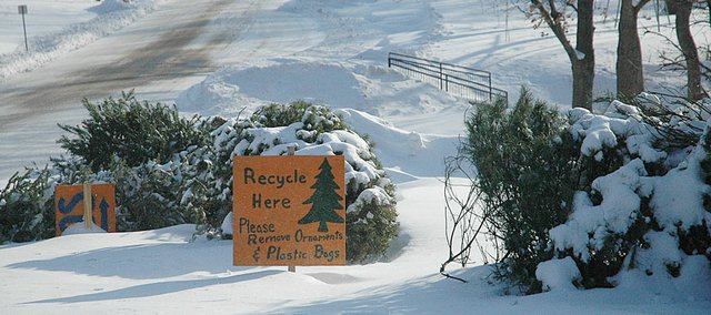 There was already a big pile of Christmas trees at the recycling area near the swimming pool after Thursday's blizzard. There is also a place to drop the trees off at Baldwin City Market. Residents are encouraged to bring trees to either site by Friday to be mulched by city crews.