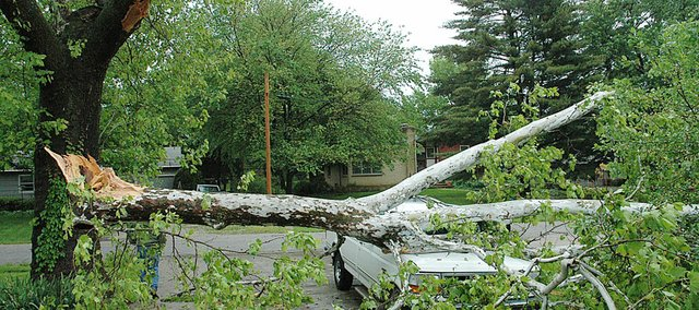 A huge tree limb was snapped off during Thursday night's storm and leveled this truck and two cars in the 200 block of Elm. It was the biggest damage reported in Baldwin City. There was heavier damage north of town around the area of the Cedar Hill Gun Club and photos of that damage will be posted. There was 2.6 inches of rain associated with the storm in the Vinland area. Send your storm photos and reports to jmyrick@baldwincity.com.