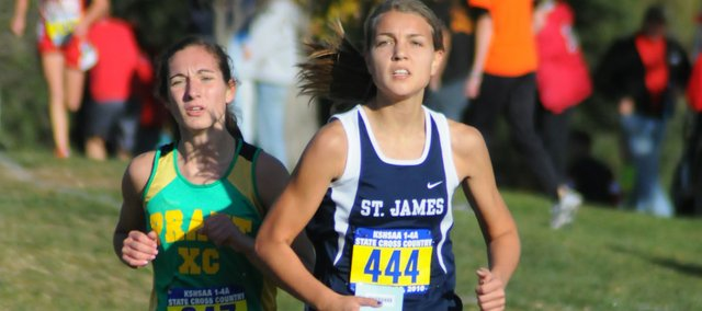 St. James Academy senior Bridgette McCormick finished fourth at the Class 4A cross country state championships.