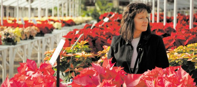 Lawrence resident Wanda Henry browses aisles and varieties of poinsettias at an area nursery in this 2009 photo.