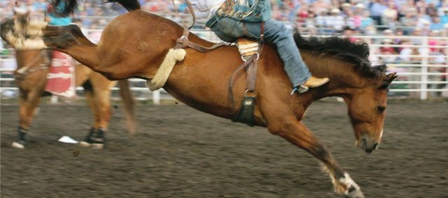 The Shrine Rodeo has been a tradition for the past 52 years. In this photo from a previous Shrine Rodeo, a bareback rider stays on his bronco for 8 seconds. This years Shrine Rodeo is May 26-28 at the Leavenworth County Fairgrounds in Tonganoxie.