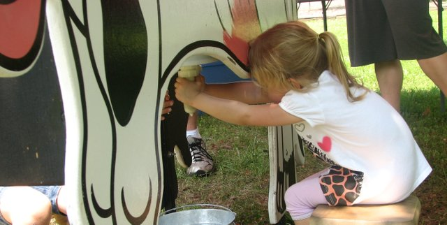 "Basehor resident Lucy Rose, 3, squeezes hard in an attempt to milk a mechanical dairy ""cow"" provided by the Midwest Dairy Association at Basehor Dairy Days on June 4."