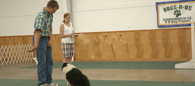 Ira Parsons motions for his 6-year-old sheltie Cody to circle him during the rally-O compeition Saturday at the Leavenworth County 4-H dog show at the county fairgrounds as judge Susan Keller watches. Ira, who was grand champion in the event, his brother and three sisters will return to the fair this week to show red Angus cattle and numerous other 4-H projects.