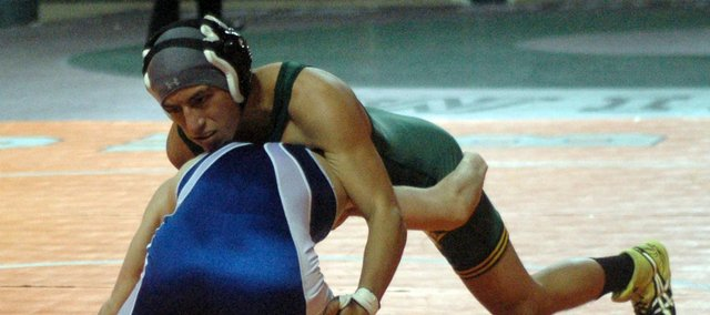 Antonio Ferro fell one win short of a medal at the Class 4A state wrestling tournament.