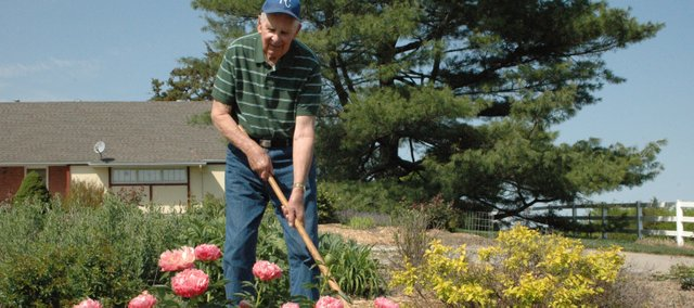 Darrell Donahue uses a hoe to weed his garden near one of his earlier-than-usual blooms, a Royal Hawaiian coral peony bush. Donahue said most plants in his expansive garden have bloomed at least two weeks earlier than in previous years.