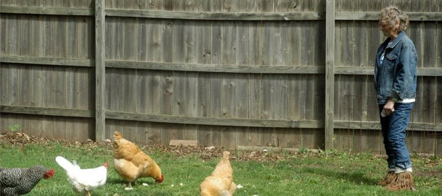 Winnie Groshong feeds hens in her back yard. Her back yard is known as the Shangri La for chickens because of her pampering ways.