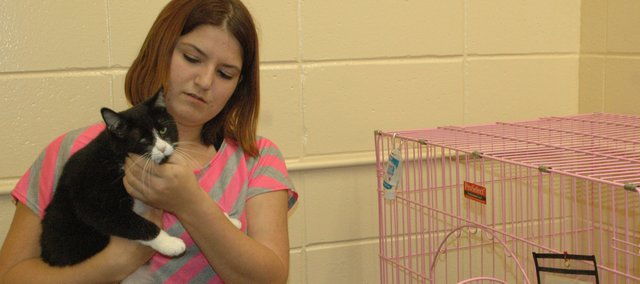 Jenna Hammond gives some special attention to Tia, a cat awaiting adoption at Bonner Animal Rescue's shelter. Hammond, a freshman at Bonner Springs High School, is using her love of animals as a focus for projects that will help her earn her Gold Award, the highest award given in Girl Scouts. The first project will be a spay and neuter event April 30.