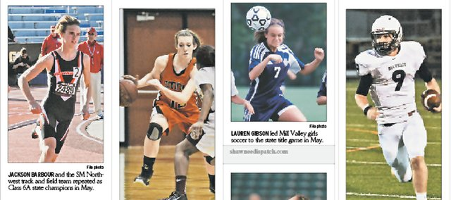 There were enough big stories in the Shawnee sports community in 2012 to fill a Pinterest board.