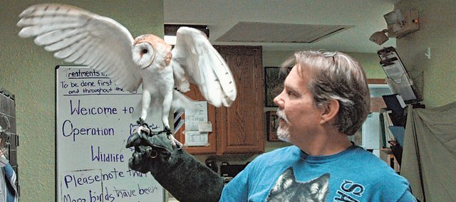 Gizmo, left, is pictured with longtime Operation WildLife Inc. volunteer Gary Crain. The barn owl was brought to OWL with a broken wing last year. The animal rehabilitation clinic is facing financial troubles after food prices went up as a result of the summer drought and a national mouse and rat shortage. 