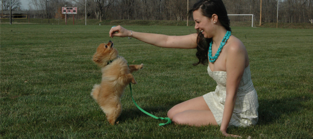 After being reunited, Aubrey Koontz and her Pomeranian, Cash, hang out at Chieftain Park in Tonganoxie.