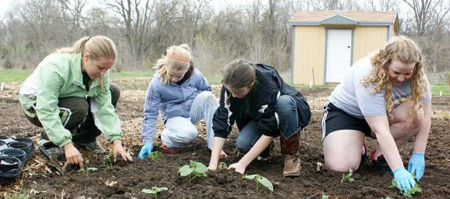 Basehor Rustlers 4-H Club members brave chilly weather and rain last week to plant seedlings in their plot at the community garden.