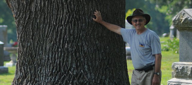 Baldwin City Tree Board President Roger Boyd leans against a dying tulip tree in the Oakwood Cemetery. Boyd said the tree was at least 100 years old and could date to the founding of the cemetery in 1869.