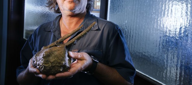 Paleontologist David Burnham of the University of Kansas holds a cast of a fossil from a section of a hadrosaur backbone, which has a T-Rex tooth embedded within it. The fossil was found in the Hell Creek formation in South Dakota by a student of Burnham's. Burnham and others at the KU Biodiversity Institute have found what they believe is conclusive proof that the Tyrannosaurus rex was indeed a predator and not just a scavenger.
