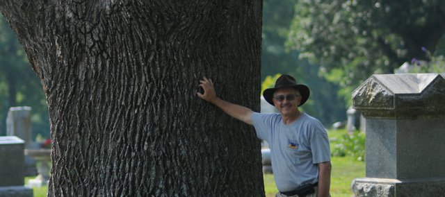 Baldwin City Tree Board President Roger Boyd leans late last spring against a dying 100-foot-tall yellow poplar tree in Oakwood Cemetery. The tree has since been trimmed of its branches and will be carved this summer into an angel.
