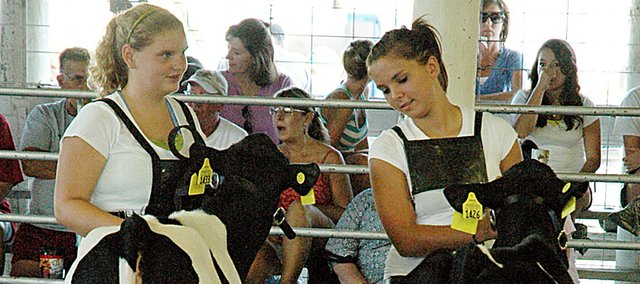 Brittnay George, left, and Kelly Baker of the Vinland Valley 4-H Club show their calves at the dairy show  at a past Douglas County Fair in Lawrence. 4-H members are already involved with the fair which will hit its stride in the coming week.