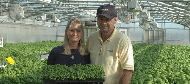 Since they began producing living herbs for area grocery stores several years ago, Pam and Jeff Meyer of Cal-Ann Farms find their business continues to grow.