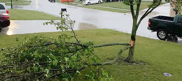 A severe thunderstorm early Saturday morning left some Tonganoxie residents cleaning up debris from trees damaged during the storm.