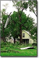 Debris hangs from a tree last May at a home across from City Hall.