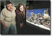 Wayne and Kathleen Gillett donated a coral reef aquarium recently to the University of Kansas. The rural McLouth couple started work on their underwater collection following several snorkeling trips to the Caribbean.