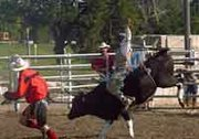 Caleb Hines takes a steer for a wild ride during the finals of the Christian Youth Rodeo Association's event Sunday in Ottawa. The ride was good for 68 points.