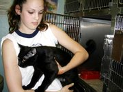 Samantha Moreland, a Lansing Middle School eighth-grader and member of Girl Scout Troop 739, helps a cat out of its cage Thursday at the Leavenworth Animal Control Shelter.