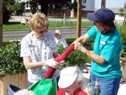 """Master Gardeners JoAnn Ferrar, left, and Candy Dials make a """"knee-high"""" planter out of a newspaper bag and pantyhose at the Enabling Garden, which is at the Leaven-worth County Extension Office, 500 Eisenhower Road."""