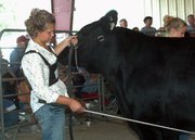 Jennifer Miller shows her crossbred steer at the 4-H/FFA Beef Show Thursday at the Leavenworth County Fair in Tonganoxie.