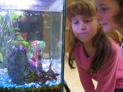 Emma Bresser, right, and Ivana Lopez watch the seven fish that make their home in an aquarium near the front office at Lansing Elementary School.