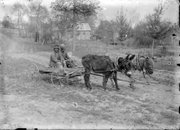 Locals with their mule-driven wagon.