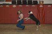 Anna Buddish and her smooth hair collie, Witaker, performed their dog freestyle dance for the 4-H dance judge.