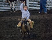 Keigan Rowe, 5, holds on tight during the Mutton Bustin' competition Friday at the Abdallah Shrine Rodeo.