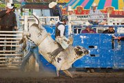 A rider holds on tight to stay on a bucking bull during competitions at the Shrine Rodeo.