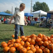 Torin Quinn, 6, considers which pumpkin he will choose to paint for the pumpkin painting contest.