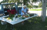 Betty Nick arranges cucumbers at the Nick's Veggie Farm stand at the Basehor Farmer's Market on Saturday, Aug. 27.